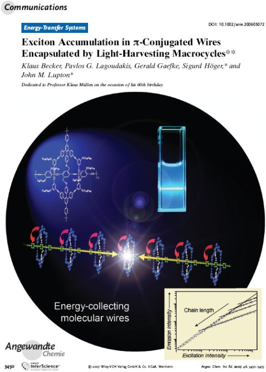 Exciton Accumulation in pi-Conjugated Wires Encapsulated by Light-Harvesting Macrocycles